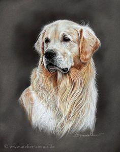 Pastell - Ein Tierportrait, Pferdeportrait oder Hundeportrait gemalt nach Fotovorlage. Portraitmalerei aus Hamburg