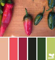 Peppered Hues - http://design-seeds.com/index.php/home/entry/peppered-hues3