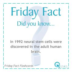 Friday Fact: In 1992 neural stem cells were discovered in the adult human brain. www.Cells4Life.com