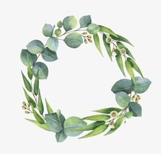 Flowers Watercolor Art Floral Wreaths New Ideas Art Floral, Floral Wreath Watercolor, Green Watercolor, Watercolor Leaves, Watercolor Art, Christmas Wreath Illustration, Molduras Vintage, Corona Floral, Wreath Drawing
