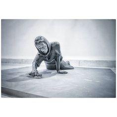 Untitled Lion Sculpture, Statue, Instagram Posts, Egg As Food, Sculpture, Sculptures