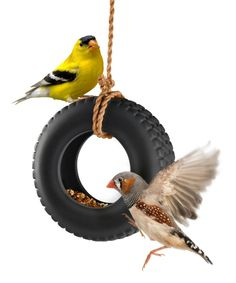 Take a look at this Swing Time Tire Bird Feeder today!