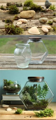 DIY Terrarium in 3 Easy Steps {NO Care for 3 Months!} How to make a terrarium easily that stays healthy with no maintenance. Beautiful DIY terrarium ideas on best plants & care tips for open & closed terrariums. - A Piece of RainbowHow to make a terrarium Mini Terrarium, Miniature Terrarium, Terrarium Closed, Bottle Terrarium, Terrarium Reptile, Terrarium Wedding, How To Make Terrariums, Succulent Terrarium, Best Terrarium Plants