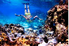 Snorkeling in Tahiti. Photo: Geoffrey Ragatz