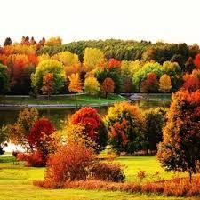 autumn park nevada - Pesquisa Google
