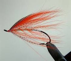 Image result for spey fly