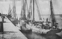 Les quais côté rivière d'Etel, thoniers prêts au départ. Carte postale vers 1920. (AD, Morbihan, 9 Fi)