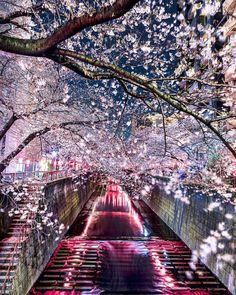 Takashi Komatsubara's landscape photographs of Japan look like colorful watercolor paintings. http://www.jetradar.com/?marker=126022