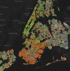 New York City's tree species mapped | News | Archinect