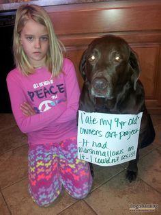 Dog shaming | Dog-Shaming2.jpg
