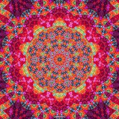 rose, pink fractal, kaleidoscop imag, pattern, color, artsi, background, thing, mandala