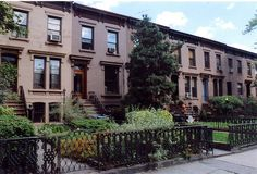 Spotlight on Carroll Gardens Brooklyn!