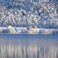 present  I G  S P E C I A L  M E N T I O N  P H O T O |  @gammel63  L O C A T I O N |Skjelbreida-Fræna-Norway  __________________________________  F R O M | @ig_europa  A D M I N | @emil_io @maraefrida @giuliano_abate S E L E C T E D | our team  F E A U T U R E D  T A G | #ig_europa #ig_europe  M A I L | igworldclub@gmail.com S O C I A L | Facebook  Twitter M E M B E R S | @igworldclub_officialaccount  C O U N T R Y  R E Q U I R E D | If you want to join us and open an igworldclub account of…