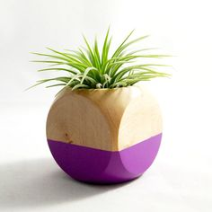 Cube Planter in Purple