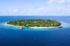 Divamboo.com - Bandos Island Resort