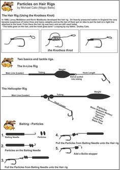 Freshwater fishing can be a great experience. Find out more about freshwater fishing including useful tips and how to stay safe when you are on the water. Carp Fishing Tips, Boy Fishing, Fishing Rigs, Fishing Knots, Fishing Stuff, Carp Rigs, Fishing Techniques, Important Facts, Fishing Equipment