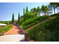 Progettazione Giardini > Alcuni nostri progetti - Trenti Vivai
