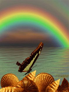 The perfect Rainbow Animated GIF for your conversation. Discover and Share the best GIFs on Tenor. Butterfly Gif, Butterfly Pictures, Butterfly Wallpaper, Rainbow Butterfly, Beautiful Gif, Beautiful Pictures, Rosas Gif, Gif Bonito, Foto Gif