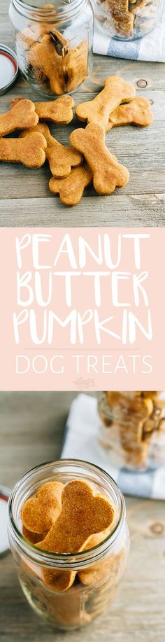 Use leftover canned pumpkin to make these 5-ingredient homemade peanut butter and pumpkin dog treats! They're super easy to make and the perfect fall treat for your furry friend.