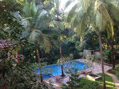 Wil je als gezin, net als Monike naar Azie of zelfs India op vakantie, dan is Goa een vakantieplek bij uitstek. Zeven tips! Net, Aquarium, India, Tips, Goldfish Bowl, Goa India, Advice, Fish Tank, Aquarius