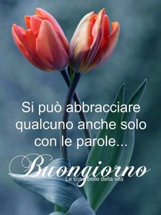Italian Memes, Italian Quotes, Good Morning Good Night, Day For Night, Italian Phrases, Start The Day, Pictures, Pocahontas, Emoticon