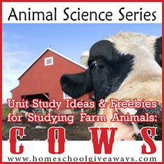Animal Science Series: Unit Study Ideas &Freebies for Studying Farm Animals ~ Cows