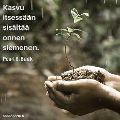 #Kasvu itsessään sisältää onnen siemenen. Pearl S. Buck #aforismi #onni #onnellisuus #onnenportti
