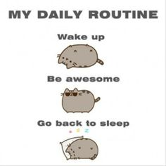 All you need is to be awesome! #funny #pusheen #daily
