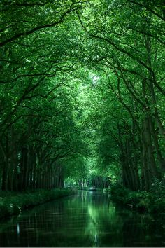 Canal in the South of France ~ Photography by Son Nguyen. 150 mile long green water canal in Southern France Canal du Midi Beautiful World, Beautiful Places, Beautiful Pictures, Beautiful Scenery, Landscape Photography, Nature Photography, Scenary Photography, Foto Youtube, France Photography