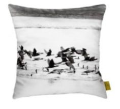 #cormorant #cushion #gots #vegan #flying #birds // #kormoran #kissen #bio #öko #vögel #fliegen