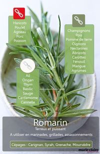 Comment utiliser le romarin en cuisine ? Spices And Herbs, Fresh Herbs, Cooking Tips, Cooking Recipes, Healthy Recipes, Marinade Sauce, Eat Pretty, Aromatic Herbs, Food Facts