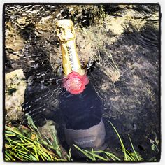 Champagne chilling on... stream. Glamping OH YEAH