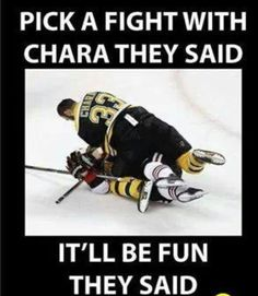Only idiots pick a fight with Chara. Boston Bruins Funny, Boston Bruins Hockey, Chicago Blackhawks, Hockey Baby, Hockey Goalie, Hockey Teams, Hockey Stuff, Funny Hockey Memes, Baseball Fight