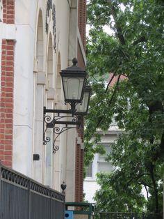 Lantern lights - photo by Carol Greene