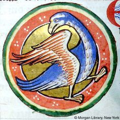 Fulica | Bestiary | England, possibly in Lincoln or York | ca. 1185 | The Morgan Library & Museum
