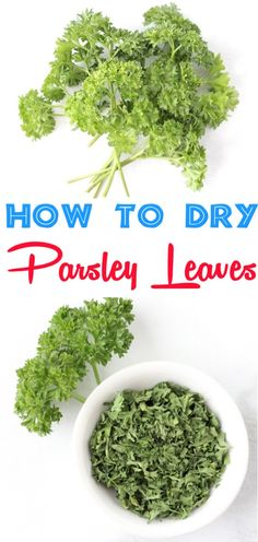 How to Dry Parsley Leaves Fast! {Dried Herb Trick} - The Frugal Girls How to Dry Parsley Leaves in Microwave! This easy trick works like a charm, and is the best way to preserve those fresh herbs from your garden! Mason Jar Herbs, Mason Jar Herb Garden, Herbs Garden, Fruit Garden, Garden Pests, Mason Jars, How To Dry Oregano, How To Dry Basil, Grilled Cod Recipes