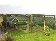 I just love these natural spacious outdoorsy enclosures. Rabbit Shed, Rabbit Run, House Rabbit, Pet Rabbit, Cage Hamster, Pet Cage, Bunny Cages, Rabbit Cages, Rabbit Habitat