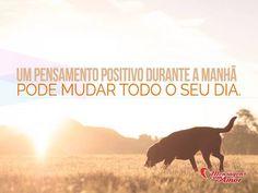 Bom dia! Um pensamento positivo durante a manhã pode mudar todo o seu dia! #bomdia #bom #dia #pensamento #positivo #manha #dia