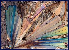 gorgeous - a grain of salt magnified 40 times