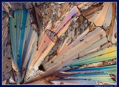 gorgeous - a grain of salt magnified 40 times
