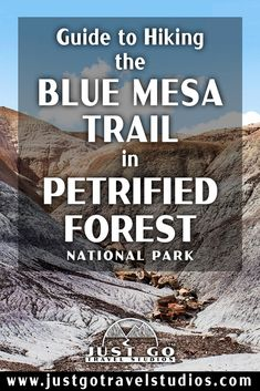 The Blue Mesa Trail in Petrified Forest National Park is a fantastic short hike. Our blog on this great hike in Petrified Forest will help you know what to do and what to expect while you are out on your hike! Petrified Forest National Park, Arizona Travel, Just Go, Trail, National Parks, Hiking, Blog, Walks, Blogging