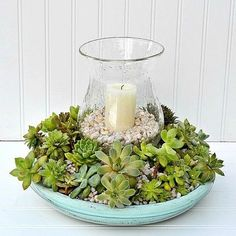 Amazing Diy Succulents Garden Decor Ideas 63
