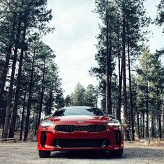 Taking this baby on a #roadtrip to the #grandcanyon. I feel like an instagram girlfriend. Mmmm take another one I dont like this one. Lulz although Im sure if this @kiamotorsusa #kiastinger could talk itd be like you told me thered be champagne . Still havent found a name for it yet. Boujee Beyoncé? Boujoncé?! #chasingthugnanny