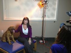 Miami Veterinary Specialists - Miami, FL, United States. WSVN TV shoot with Vine Communications and Max, the 4-month old Dogue de Bordeaux.