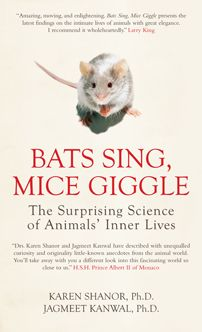 """Read """"Bats Sing, Mice Giggle The Surprising Science of Animals' Inner Lives"""" by Karen Shanor available from Rakuten Kobo. Drawing upon the very latest scientific research, Karen Shanor and Jagmeet Kanwal show how animals build, create and ent. New Scientist, Animal Science, Thing 1, Book People, Book Nooks, Secret Life, Science And Nature, Fun Facts, Books To Read"""