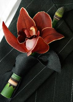 mini cymbidium orchid with equisetum stem and ribbon tied