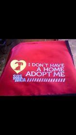 Por qué ir a la Quinta Avenida con los perros del refugio.?    Todos los días caminamos con los perritos del refugio por la quinta avenida, para lo cual requerimos 4 voluntarios diarios que nos ayuden a caminar con ellos y hacemos esto por tres razones principales.    1.- Recaudar fondos para seguir manteniendo el refugio, recuerda que ninguna empresa o particular nos representa así que el refugio se mantiene únicamente de tus donaciones. ... 2.- Los perros son conocidos por la gen..