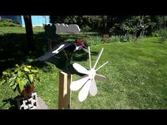 Crowing Rooster Whirligig with music - YouTube