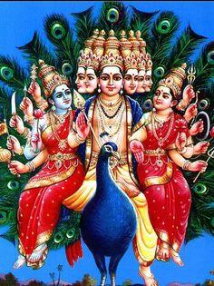 He is the son of Parvati and Shiva, brother of Ganesha, and a god whose life story has many versions in Hinduism Shiva Hindu, Shiva Shakti, Hindu Deities, Hindu Art, Ganesha Art, Lord Ganesha, Jai Ganesh, Lord Krishna, Lord Murugan Wallpapers