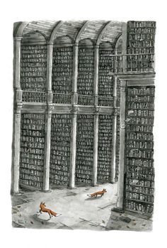 The Long Room and the Foxes, Trinity College Dublin - signed limited edition giclée - Jam Art PrintsJam Art Prints Trinity College Dublin, Long Room, Black And White Prints, Irish Art, Black And White Illustration, Giclee Print, How To Draw Hands, Foxes, Artists